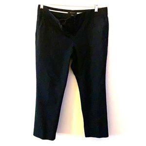 Ann Taylor dress pants-10P